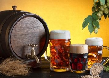 Bavarian Beer Tours