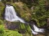 Dollar-2016-08-12-A-Triberg-Wasserfall-66-864